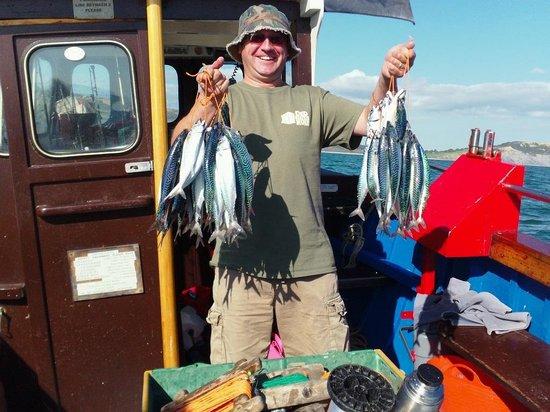 Harry May Boat Trips: Lots of lovely Mackerel!