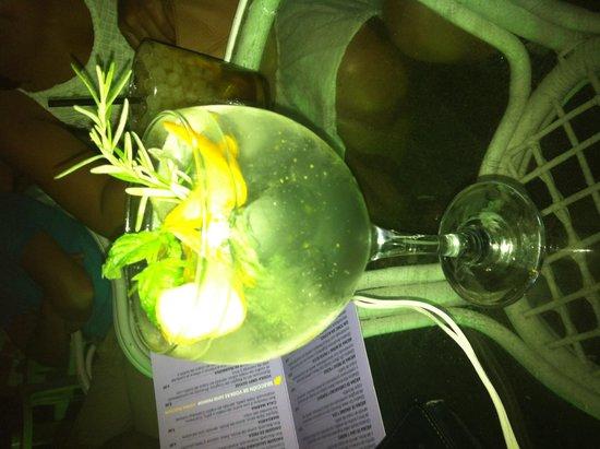 Servigroup Marina Playa: Gin tonic Mediterraneo