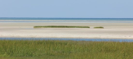 Gray's Beach: A view from the boardwalk