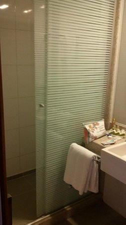 Novotel Sao Paulo Morumbi: Banheiro/ducha