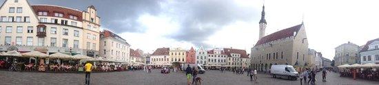 Tallinn Old Town: Panorámica plaza del ayuntamieto!