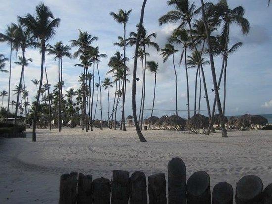 Paradisus Palma Real Golf & Spa Resort: played volleyball