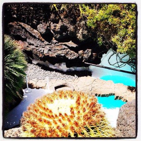 Fundación Cesar Manrique : Vista de la piscina desde arriba