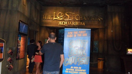 The Lost Chambers Aquarium : Entrada do aquario