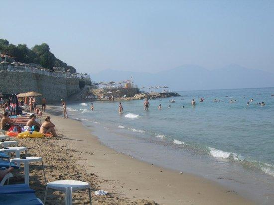 Palmin Hotel: beach