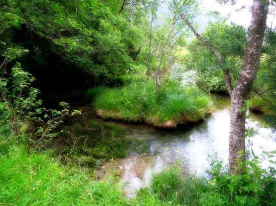 Ettal Wintersport: Wildfutterung im Grasswangtal: Ammerrquelle