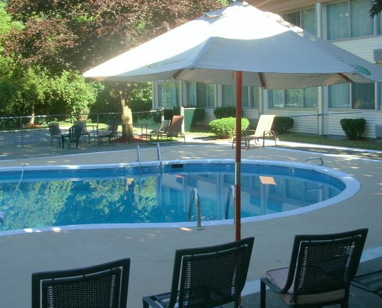 Quality Inn: Outdoor pool