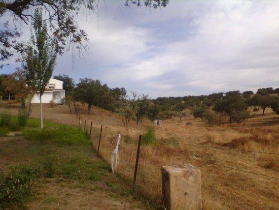 Herrera de Alcántara, España: Vistas de la finca