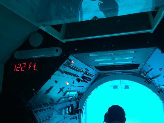 De Palm Tours: Atlantis Submarines Expedition: Bajo del mar (8)