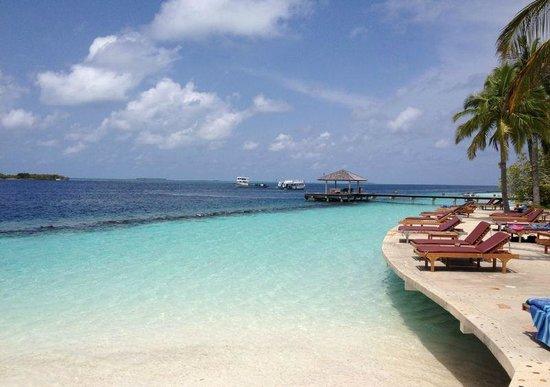 Royal Island Resort & Spa: pool side