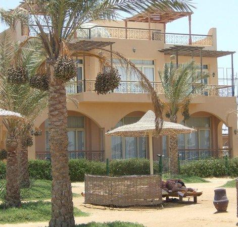 Desert Rose Resort: Корпус отеля