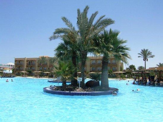 Desert Rose Resort: Бассейн