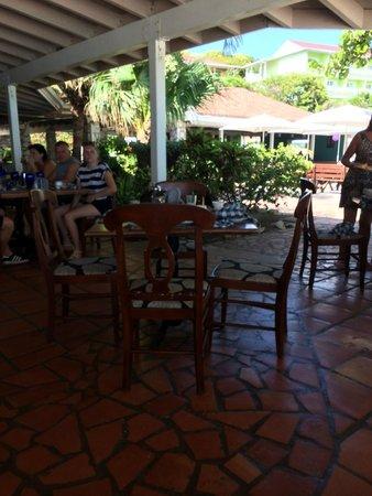 Pineapple Beach Club Antigua: more birds