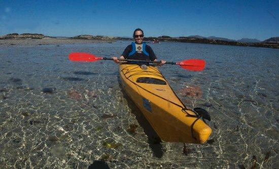 Rockhopper Sea Kayaking - Day Tours: Kayaking Arisaig