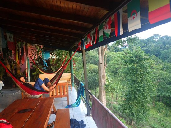 Hostel Vista Serena: View of the hammock and sitting area