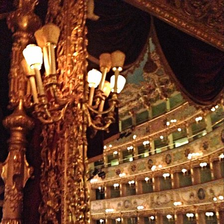 Teatro La Fenice: The main theater - the craftsmanship in the architecture is amazing!
