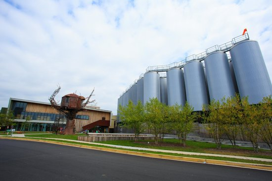 Dogfish Head Craft Brewery : OUtside