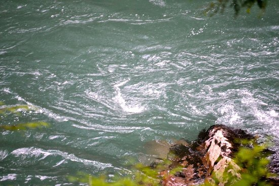 Ohanapecosh Campground : River