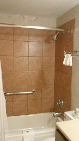 Twin Peaks Lodge & Hot Springs: Shower