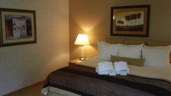 Twin Peaks Lodge & Hot Springs: King Suite