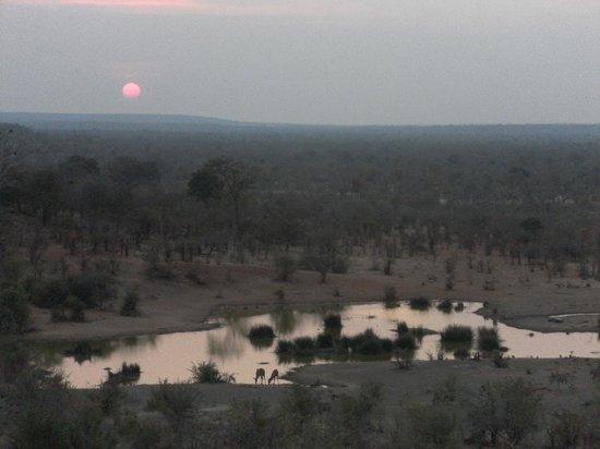 Victoria Falls Safari Lodge: The water hole towards evening