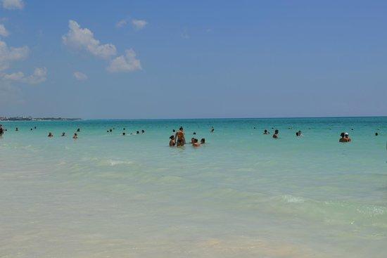 Catalonia Playa Maroma : MER