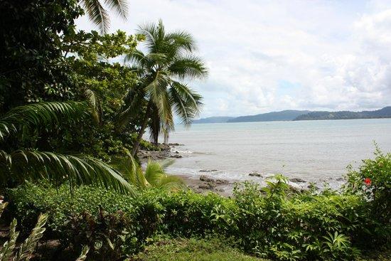 Jinetes de Osa Hotel : View
