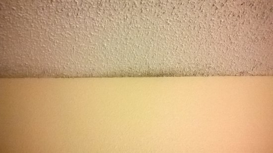 Hampton Inn Tampa International Airport / Westshore: Ceiling