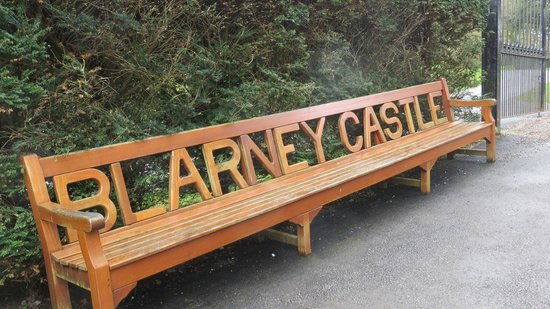 Blarney Castle & Gardens: Bench