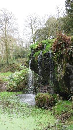Blarney Castle & Gardens: Grounds