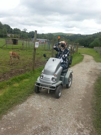 Bowland Wild Boar Park: scooter
