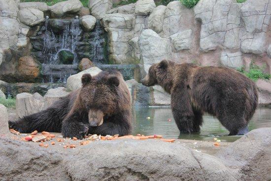 Zoo Brno: a colazione