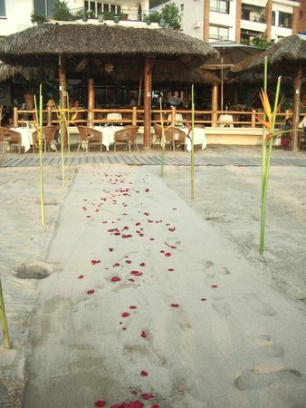 La Palapa Restaurant : Rose Petals on the path to our table