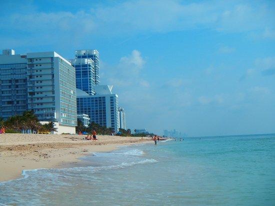 The Mimosa Hotel: playa frente al hotel