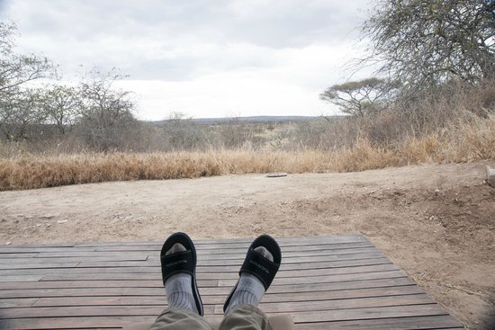 Oliver's Camp, Asilia Africa: View from the veranda