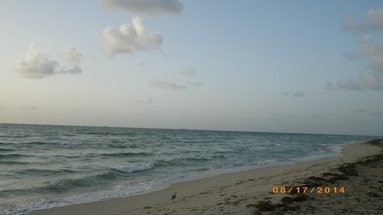Holiday Inn Miami Beach : early morning photo
