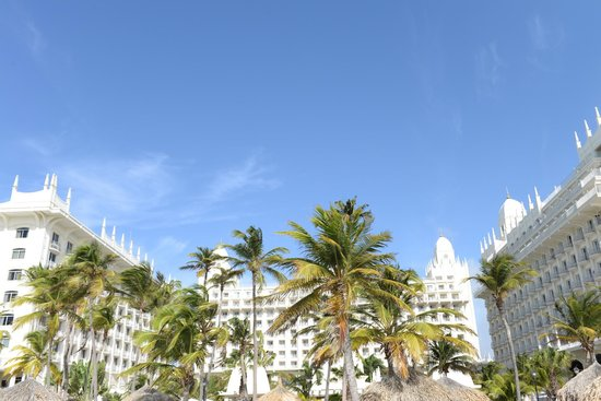 Hotel Riu Palace Aruba: On Palm Beach