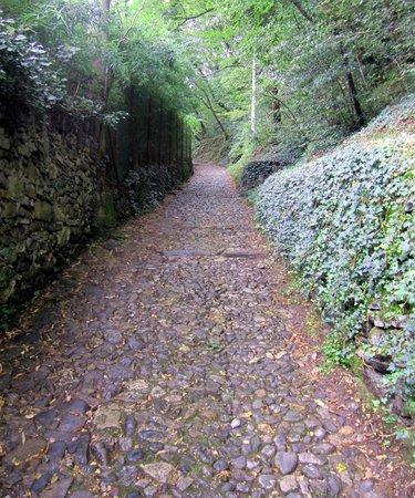 Sentiero del Viandante: Sentiero
