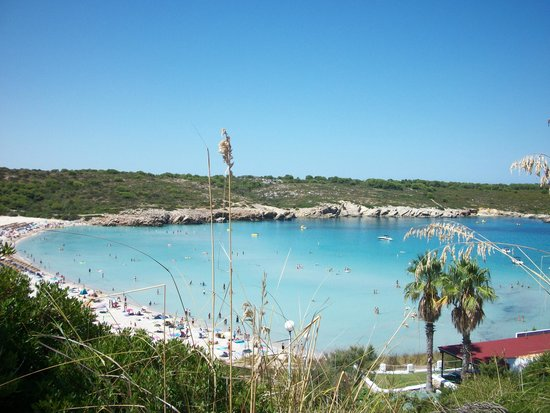 Beach Club: vista spiaggia hotel