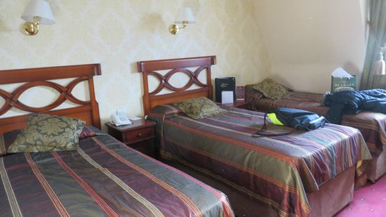 Dromhall Hotel: Triple
