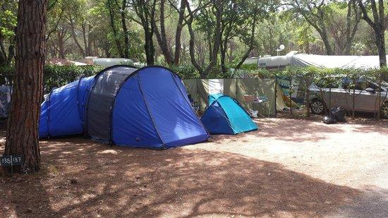 Camping La Baume - Residence La Palmeraie: PITCH