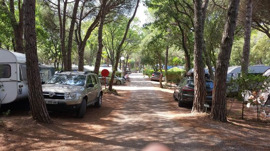 Camping La Baume - Residence La Palmeraie : ROWS OF PITCHES