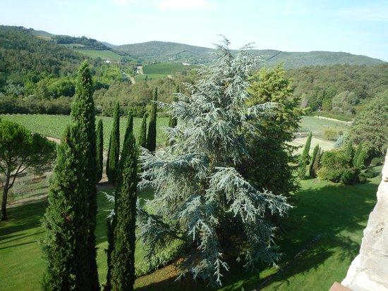 Castello di Spaltenna Exclusive Tuscan Resort & Spa: Vue de la chambre