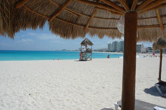 Krystal Grand Punta Cancun: Colori di Cancun