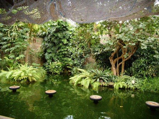 Zoologischer Garten Leipzig: Tropenhalle