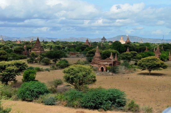 Temples de Bagan : one view of the Bagan plain