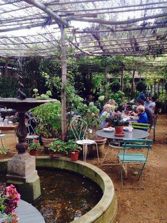 Petersham Nurseries Cafè: Petersham Nurseries