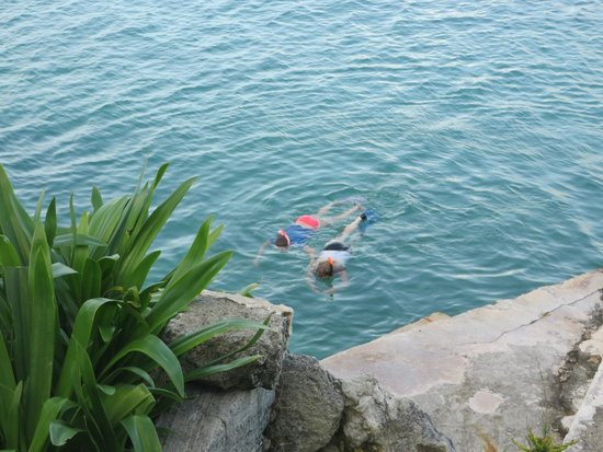 Watford Studios : snorkeling off the dock