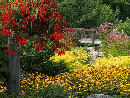 Coastal Maine Botanical Gardens: CMBG #1