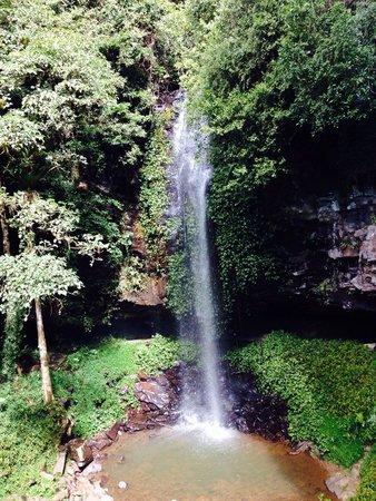 Parque Nacional de Dorrigo: Crystal waterfall